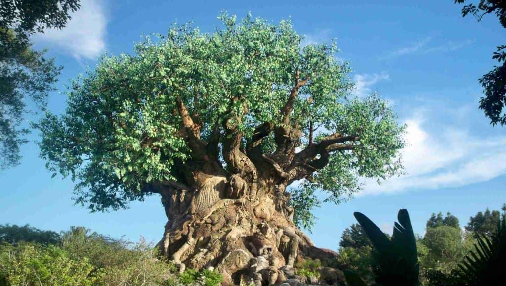 Imagen Disney Arbol De La Vida Animal Kingdom Disney