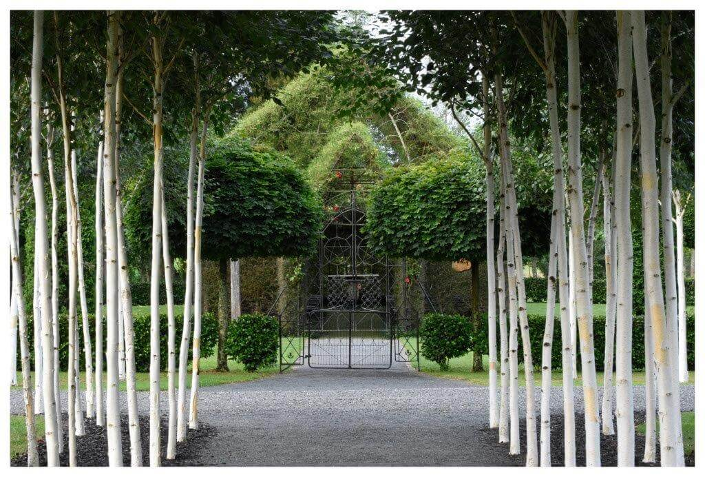 Ōhaupō TreeChurch iglesia de árbol