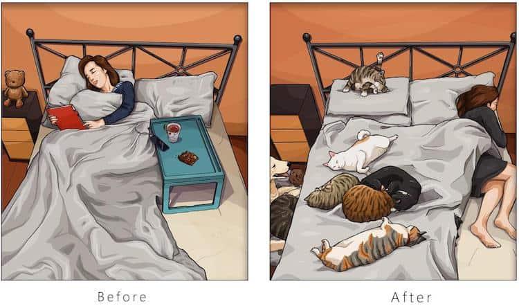 imagen tener una mascota Estas ilustraciones creadas por un artista taiwanes revelan como es la vida antes y despues de tener una mascota 11