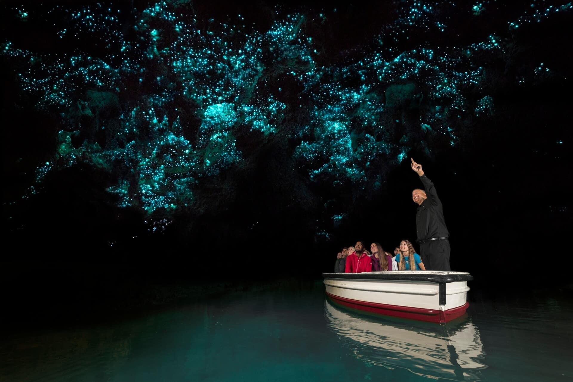 Glowworm caves, cueva de luciernagas en nueva zelanda