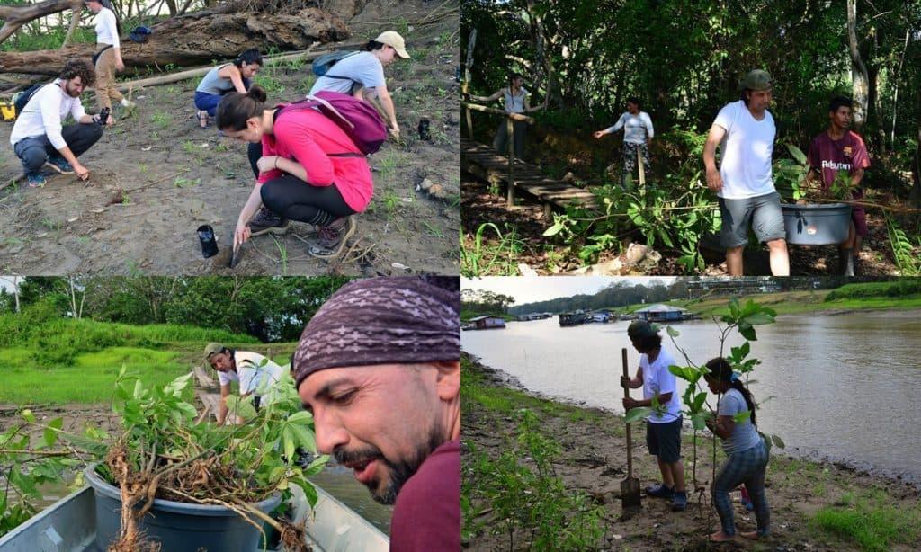 comunidades indigenas fundacion omacha voluntariado colombia hp
