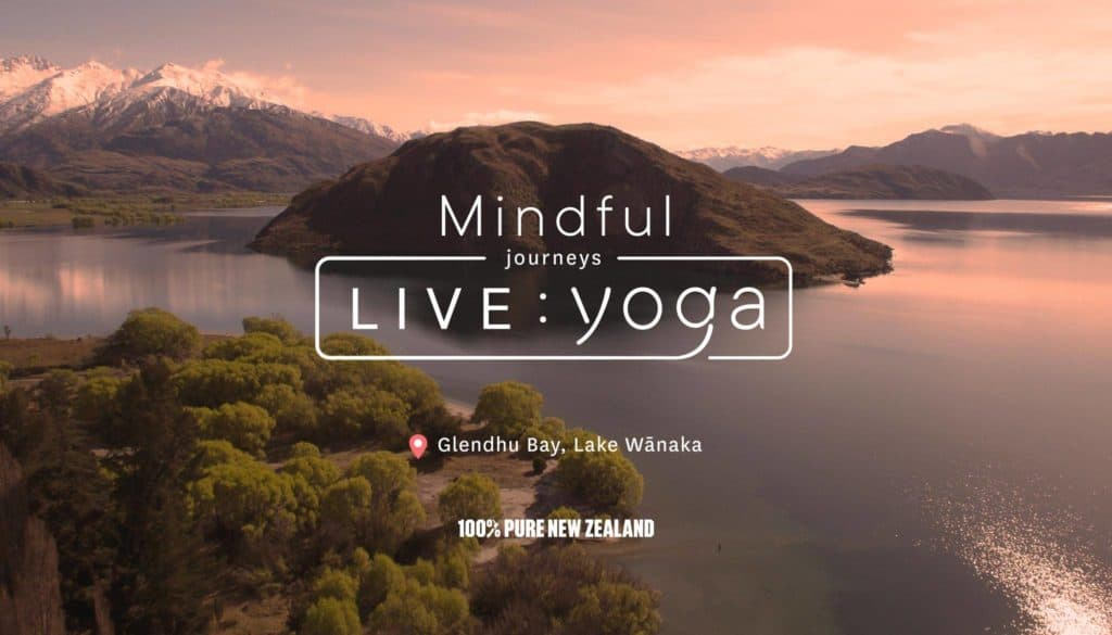 imagen clase de yoga virtual yoga