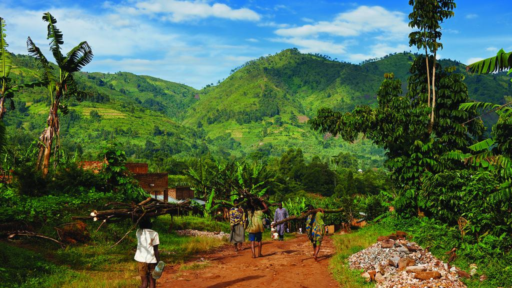 Uganda vuelve a recibir turistas internacionales que viajen tanto por negocios como por placer