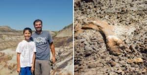 Canadá: un niño de 12 años encontró restos fósiles de dinosaurio