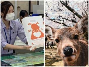 venado japon bolsa
