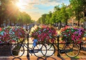 Países Bajos: Ámsterdam utilizará flores para impedir que los ciclistas aten las bicicletas a los puentes