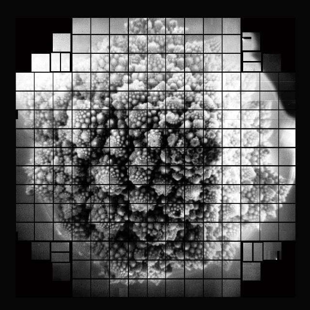 Científicos tomaron la primera imagen del mundo de 3200 megapíxeles
