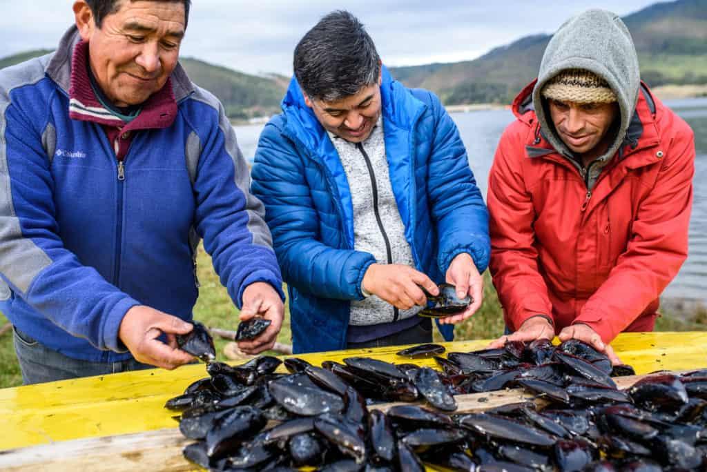 Travesías En El Sur De Chile