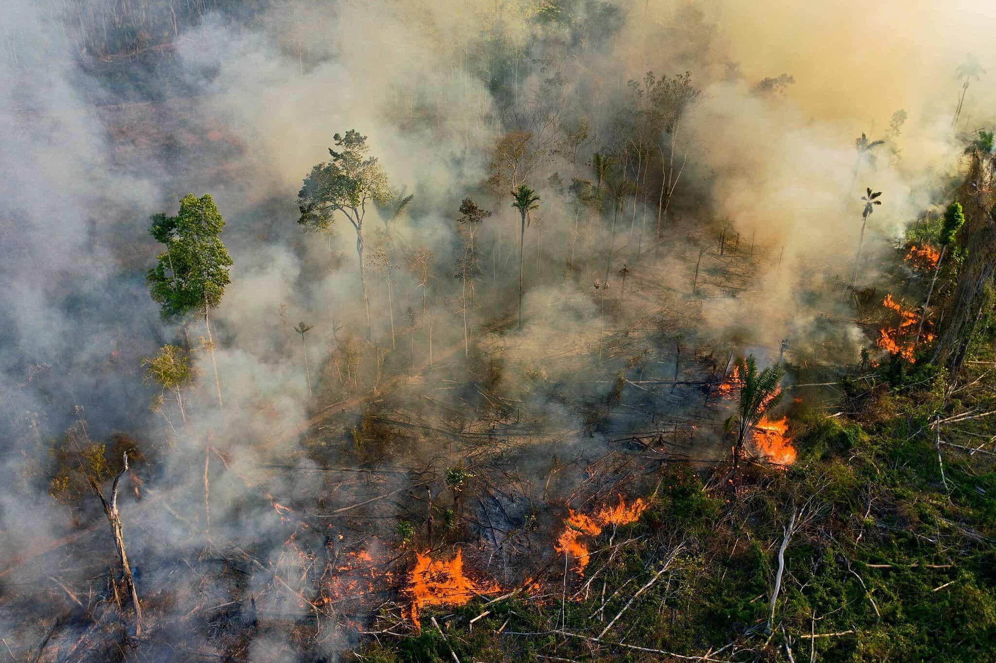 Brasil: en el mes de Octubre aumentaron los incendios en la selva amazónica