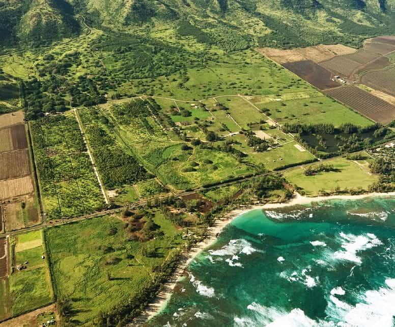 imagen Dillingham Ranch Hawai Anuncian la venta de Dillingham Ranch una propiedad situada en una locacion del rodaje de varias escenas de Lost 2