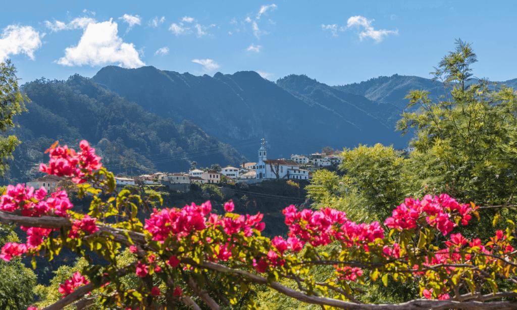 Qué hacer en Madeira, el archipiélago elegido como el mejor destino insular de Europa en los World Travel Awards