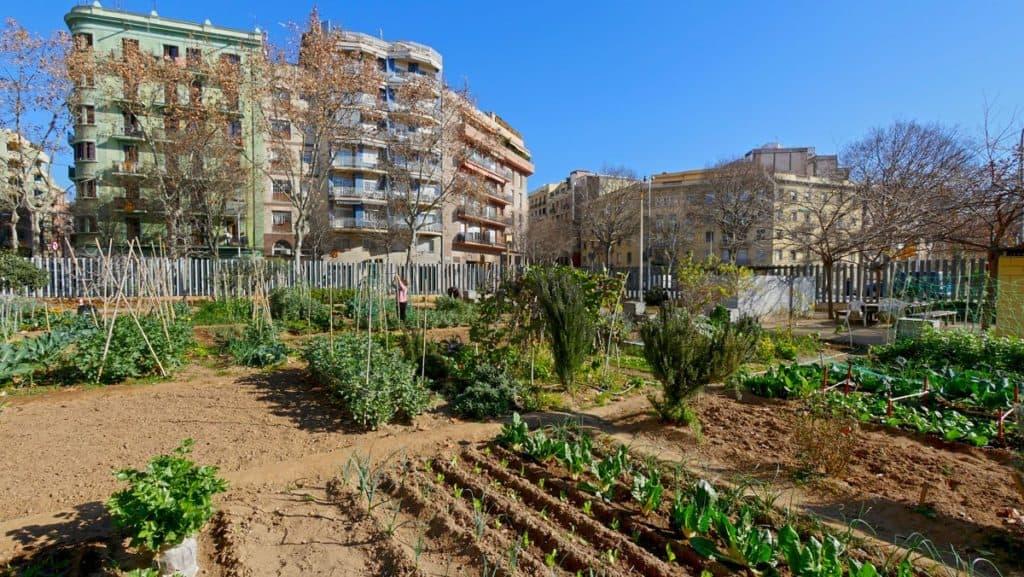 Barcelona ha sido elegida como la Capital Mundial para la Alimentación Sostenible en 2021
