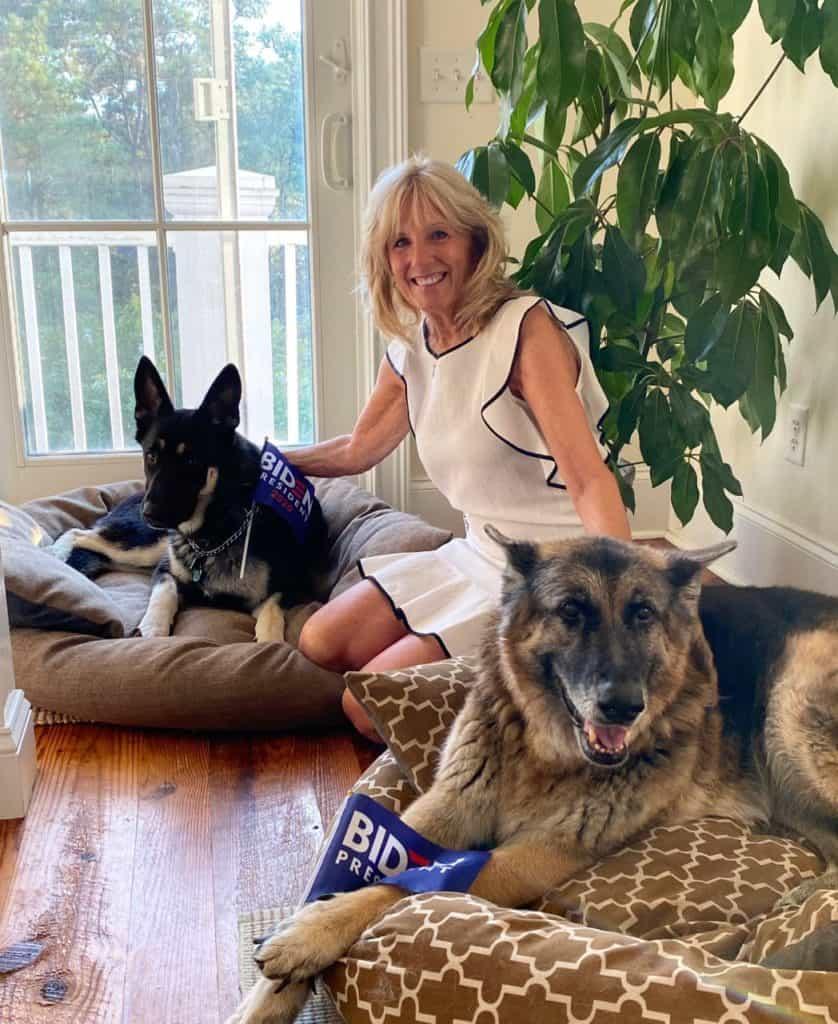 Imagen Major Estados Unidos Con El Triunfo De Joe Biden Major Se Convierte En El Primer Perro Adoptado En Vivir En La Casa Blanca 3