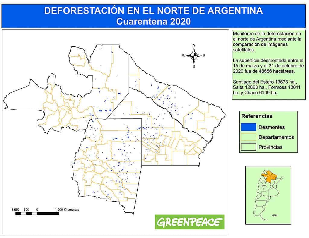 Greenpeace Asegura Que Desde Marzo Se Deforestaron Alrededor De 50000 Hectáreas En El Norte Argentino