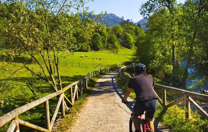 Cómo Es El Recorrido De La Senda Del Oso: Un Sendero De 22 Kilómetros Para Conocer Lo Mejor De Asturias Como Paraíso Natural