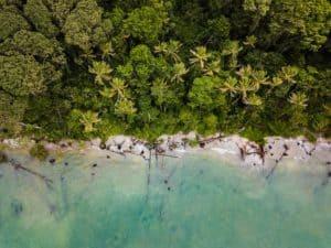 Costa Rica propone a sus turistas disminuir su huella de carbono y contribuir con la economía verde