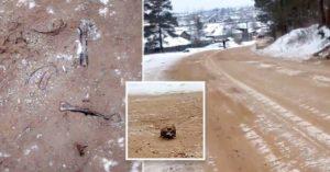 Huesos humanos fueron mezclados con arena