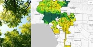 Google está probando una nueva herramienta que permite ver el espacio cubierto de árboles que tienen las ciudades