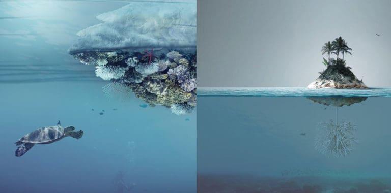 Un arquitecto italiano diseñó una isla artificial para juntar microplásticos y proteger a los animales marinos