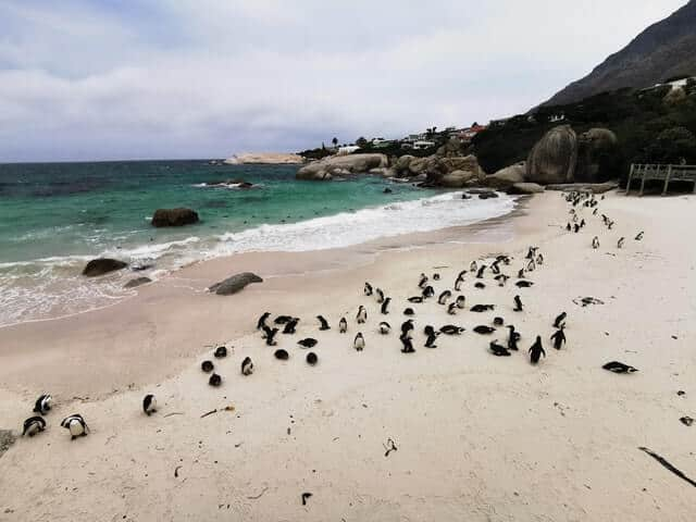 Playas Más Extrañas