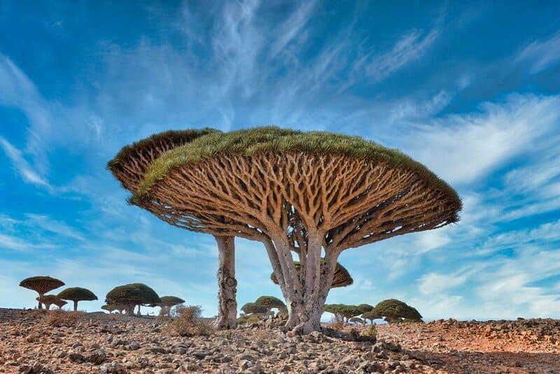 lugares del mundo que parecen hechos por extraterrestres 49208402337 feb7a4ebfb c 1