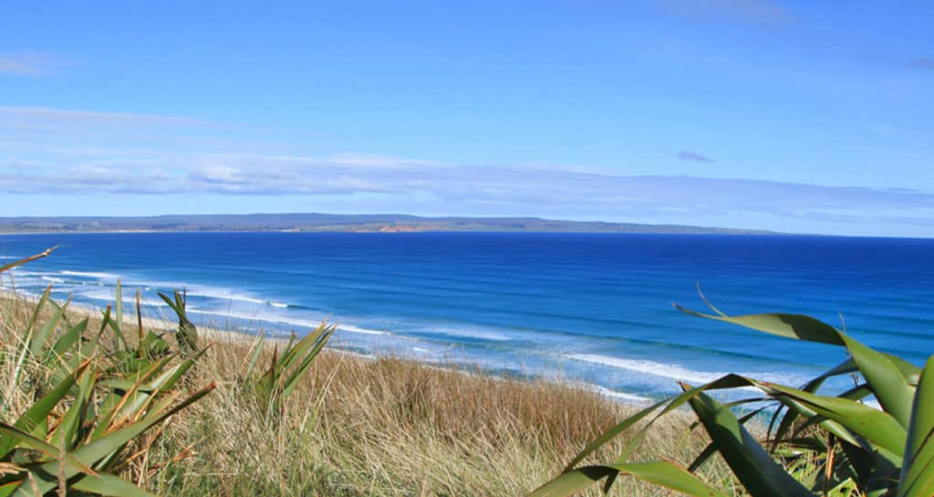 Imagen Islas Chatham Islas Chatham Nueva Zelanda 4