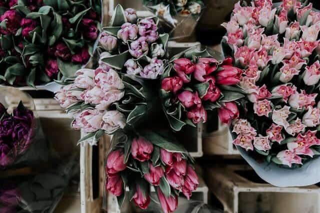 imagen mercados de flores lucija ros 30uGGkOFj18 unsplash 1
