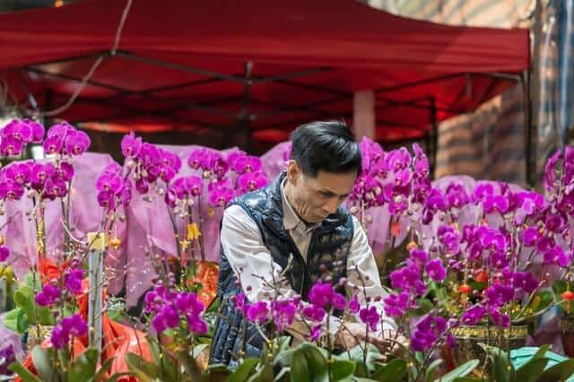 imagen mercados de flores kelvin yan vacHowacdM4 unsplash 1