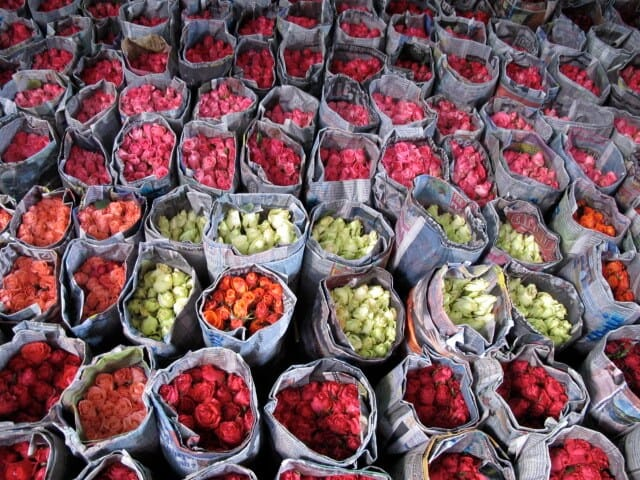 imagen mercados de flores 13069657814 c5e1e32ecd z 1