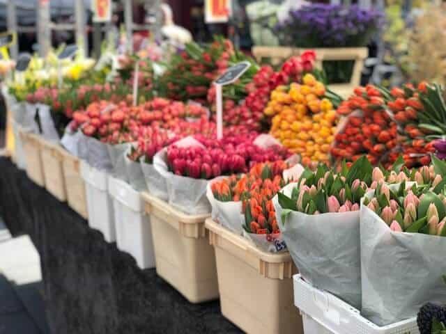 imagen mercados de flores daniel spilka 6FnCzLt3DE unsplash 1 1