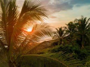 Costa Rica lanzó un concurso mediante el cual regala 15 estadías de siete días para 2021 y todo lo que hay que hacer es contar quién es esencial en tu vida