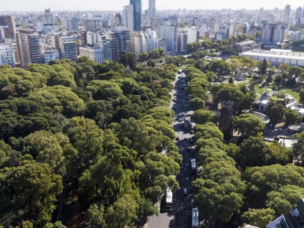 A partir de una nueva ley, la Ciudad de Buenos Aires deberá plantar 100.000 árboles por año