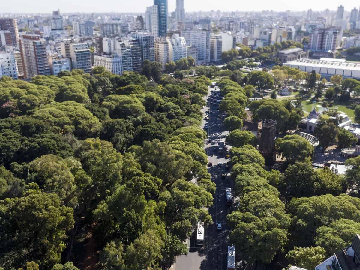 Arboles-Buenos-Aires-2