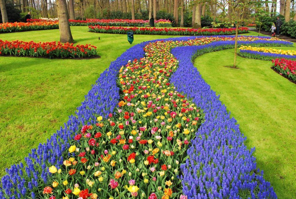 imagen jardines más bonitos del mundo boudewijn huysmans HX yGEB2evI unsplash 1