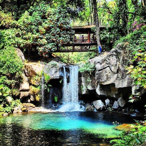 Cómo Es Por Dentro El Parque Nacional De Uruapan, Una De Las Áreas Nacionales Protegidas Más Pequeñas De México