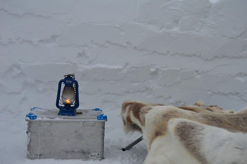 Groenlandia: la experiencia de dormir en un iglú tradicional volverá a partir de Enero 2021