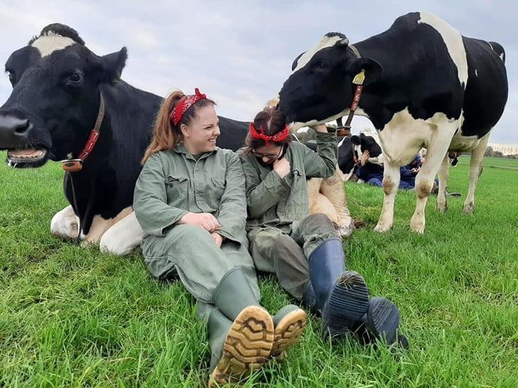 Koe Knuffelen: La Nueva Tendencia Holandesa De Acariciar Vacas Que Ayuda A Liberar Altas Cantidades De Oxitocina