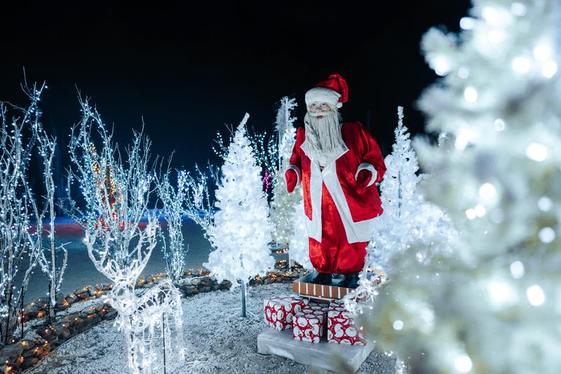 tradiciones y costumbres navideñas en Aruba