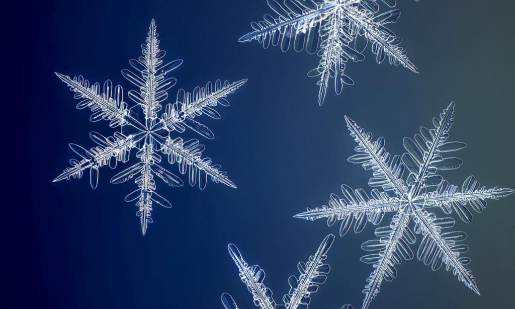 imagen copos de nieve Fotografo creo una camara especial para capturar copos de nieve en la mas alta resolucion conocida hasta el momento 0