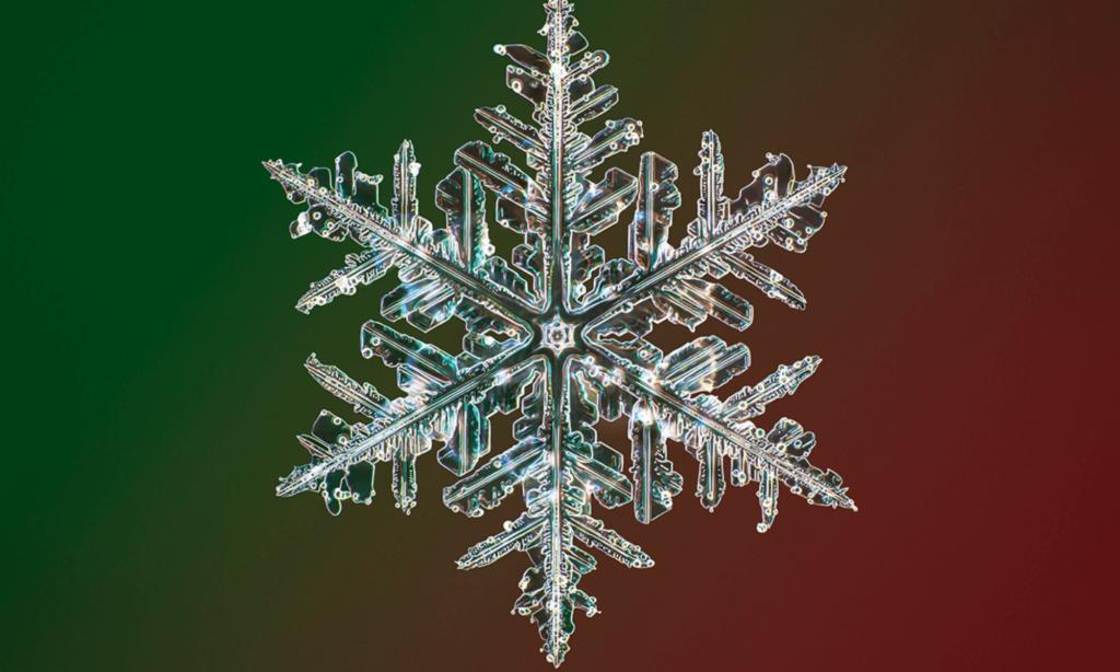 imagen copos de nieve Fotografo creo una camara especial para capturar copos de nieve en la mas alta resolucion conocida hasta el momento 3