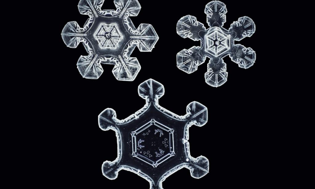 Fotógrafo creó una cámara especial para capturar copos de nieve en la más alta resolución conocida hasta el momento