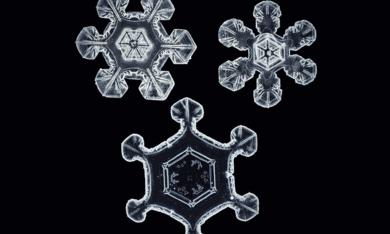 Fotógrafo creó una cámara especial para capturar copos de nieve en la más alta resolución conocida hasta el momento 1