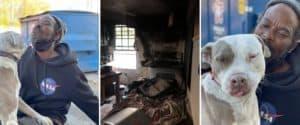 Un hombre se metió en un refugio en llamas para salvar a los animales que se encontraban allí
