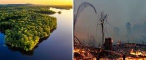 Declaran que la selva amazónica podría desaparecer para 2064 si las cosas no cambian