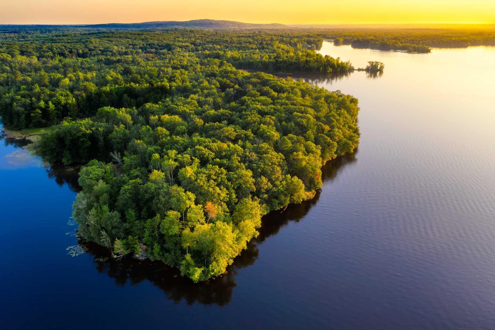 imagen selva amazonica