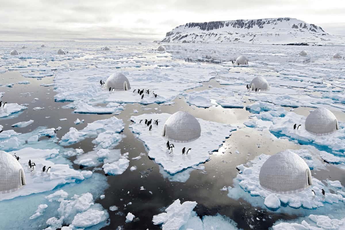 'sistema de protección de pingüinos
