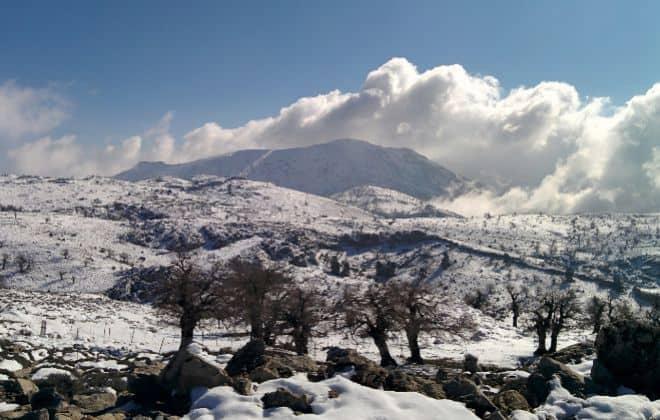 Imagen Parque Nacional Sierra De Las Nieves Espana Nuevo Parque Nacional 3