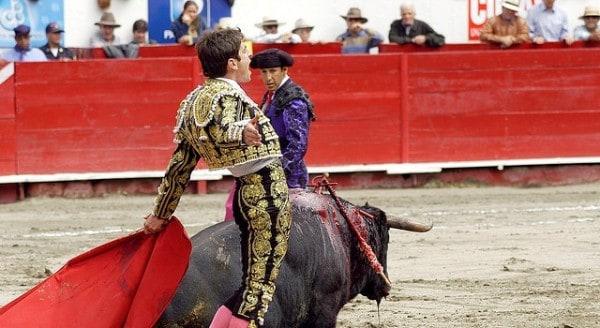 """La ciudad de Quito expidió una ordenanza para prohibir los espectáculos con sufrimiento de animales y la corrida """"Jesús del Gran Poder"""" se enfrenta a la agonía"""