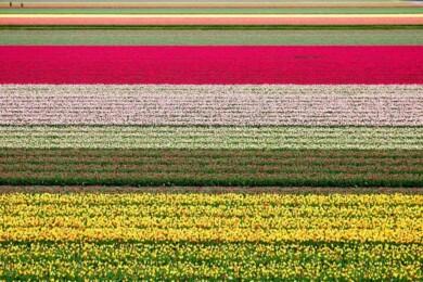 Lugares coloridos del mundo