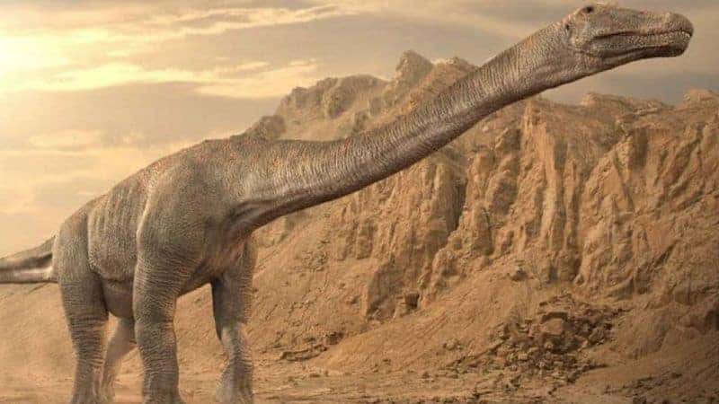 Un titanosaurio descubierto en la Patagonia argentina podría ser reconocido como el animal más grande de la historia